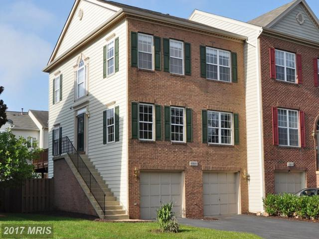 45845 Debhill Terrace, Sterling, VA 20166 (#LO10064459) :: Pearson Smith Realty