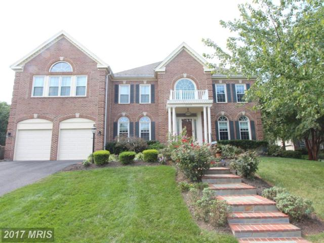 47759 Brawner Place, Sterling, VA 20165 (#LO10064670) :: Pearson Smith Realty