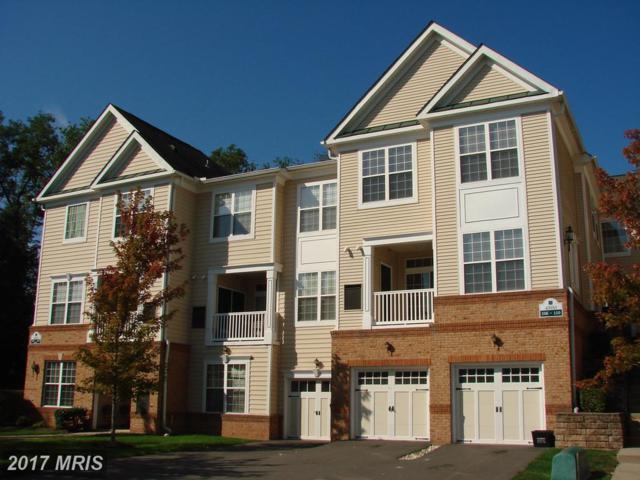 43935 Hickory Corner Terrace #107, Ashburn, VA 20147 (#LO10065134) :: LoCoMusings