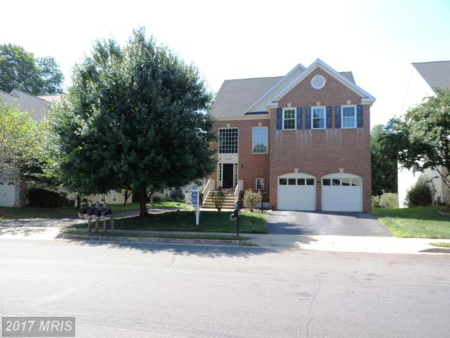 47529 Saulty Drive, Sterling, VA 20165 (#LO10065278) :: The Maryland Group of Long & Foster