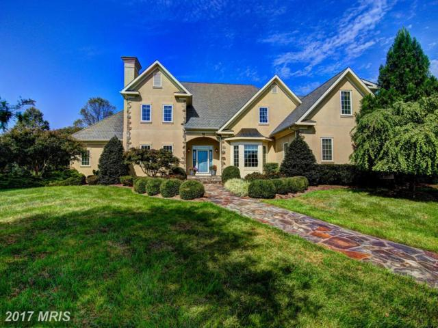 37282 Mountville Road, Middleburg, VA 20117 (#LO10065521) :: The Hagarty Real Estate Team