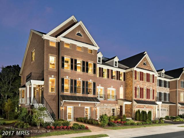 24995 Cambridge Hill Terrace, Chantilly, VA 20152 (#LO10065605) :: Wicker Homes Group