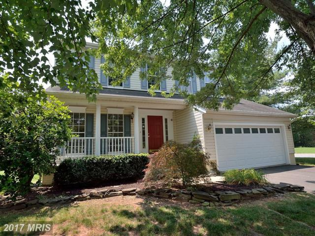 44285 Cuba Mills Court, Ashburn, VA 20147 (#LO10065714) :: Pearson Smith Realty