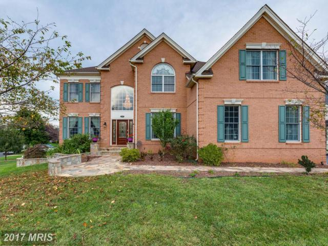 22728 Dulles Gap Court, Ashburn, VA 20148 (#LO10066296) :: LoCoMusings