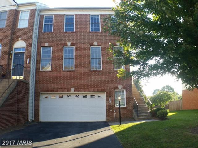 200 Misty Pond Terrace, Purcellville, VA 20132 (#LO10068351) :: LoCoMusings