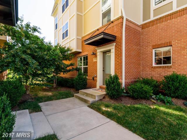 22415 Verde Gate Terrace, Ashburn, VA 20148 (#LO10069983) :: LoCoMusings