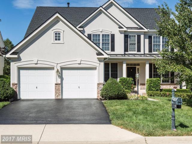 24775 Prairie Grass Drive, Aldie, VA 20105 (#LO10070921) :: Pearson Smith Realty
