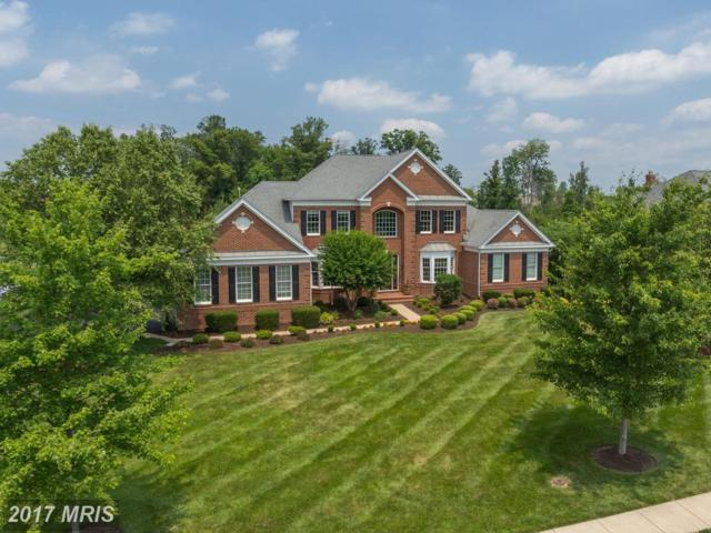 43164 Tall Pines Court, Ashburn, VA 20147 (#LO10071045) :: Pearson Smith Realty
