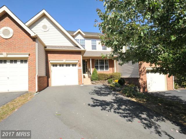 43264 Somerset Hills Terrace, Ashburn, VA 20147 (#LO10072785) :: LoCoMusings