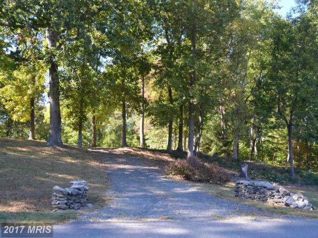 23223 Dover Road, Middleburg, VA 20117 (#LO10072993) :: LoCoMusings
