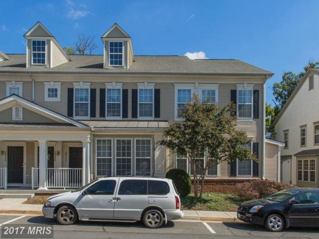 20252 Macglashan Terrace, Ashburn, VA 20147 (#LO10073408) :: Pearson Smith Realty
