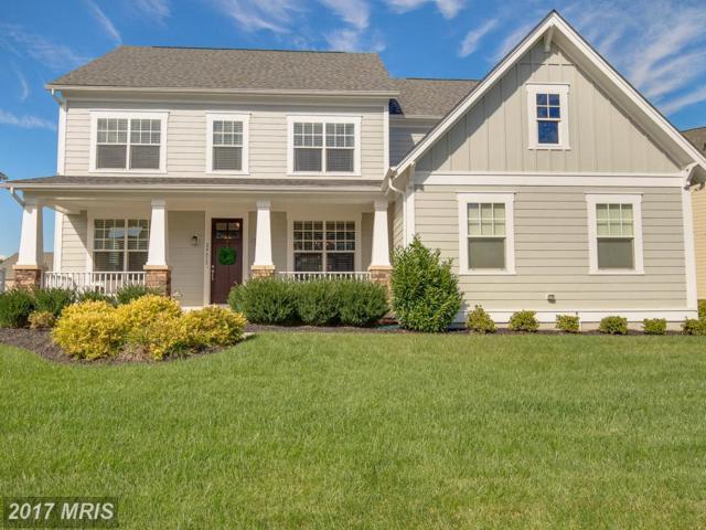 24612 Lavender Grove Drive, Aldie, VA 20105 (#LO10073811) :: LoCoMusings
