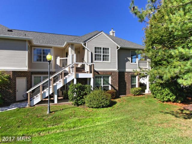 45090 Brae Terrace #201, Ashburn, VA 20147 (#LO10074450) :: Pearson Smith Realty