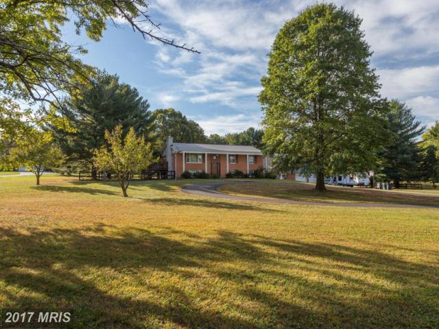 40617 Woodside Place, Leesburg, VA 20175 (#LO10075253) :: Browning Homes Group
