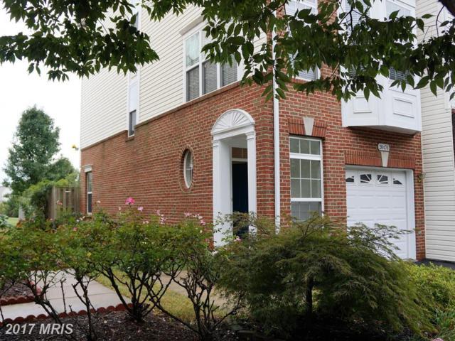 20470 Greymont Terrace, Ashburn, VA 20147 (#LO10076799) :: LoCoMusings