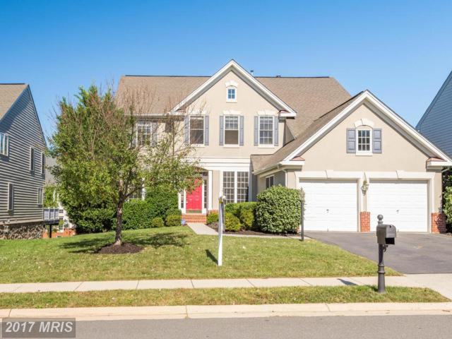 42766 Conquest Circle, Ashburn, VA 20148 (#LO10077597) :: Network Realty Group