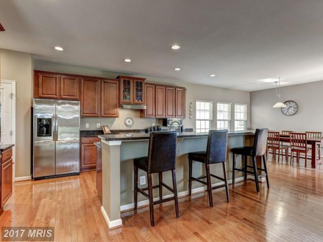 26046 First Frost Way, Chantilly, VA 20152 (#LO10077829) :: Colgan Real Estate
