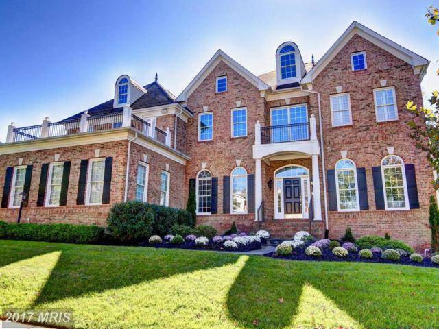 43489 Calphams Mill Court E, Leesburg, VA 20176 (#LO10078353) :: The Hagarty Real Estate Team