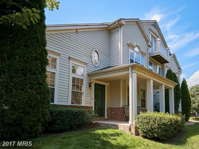 20366 Birchmere Terrace 61D, Ashburn, VA 20147 (#LO10078641) :: LoCoMusings