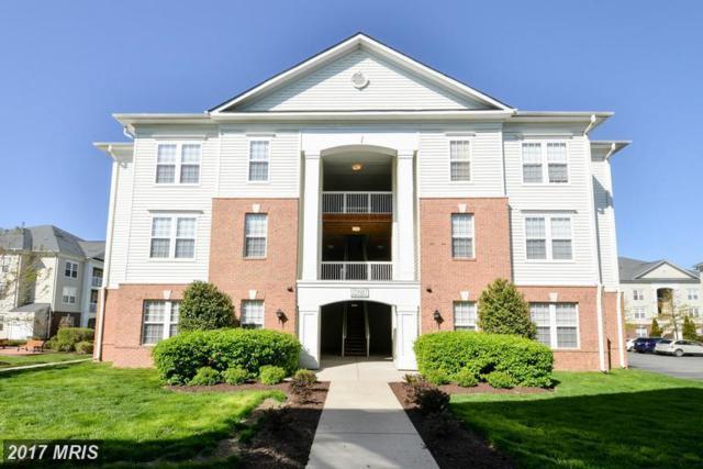 22687 Blue Elder Terrace #304, Ashburn, VA 20148 (#LO10079023) :: Colgan Real Estate