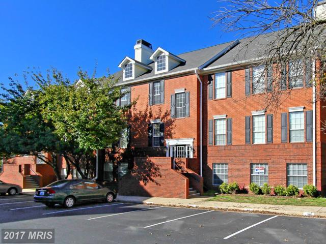 660 Gateway Drive SE #110, Leesburg, VA 20175 (#LO10079165) :: The Greg Wells Team