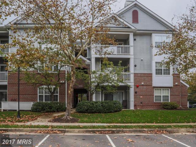 20320 Beechwood Terrace #101, Ashburn, VA 20147 (#LO10079751) :: LoCoMusings