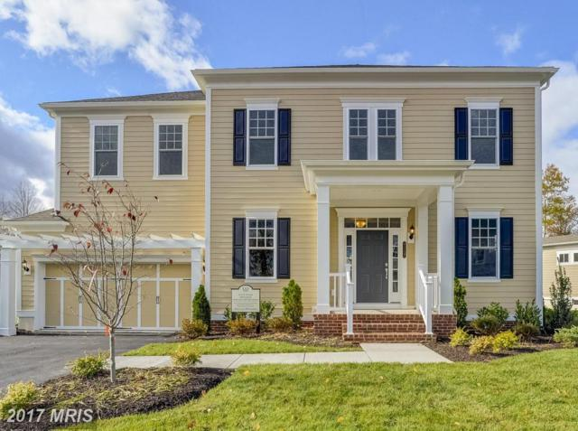 0 Spanglegrass Court #1, Aldie, VA 20105 (#LO10080046) :: Circadian Realty Group