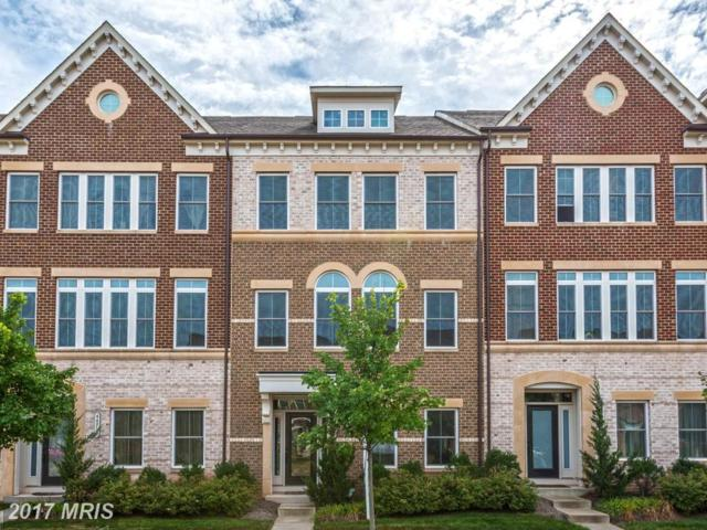 44711 Plympton Square, Ashburn, VA 20147 (#LO10080402) :: LoCoMusings