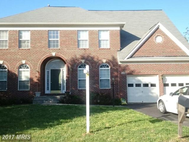 46784 Hollow Mountain Place, Sterling, VA 20164 (#LO10080626) :: The Greg Wells Team