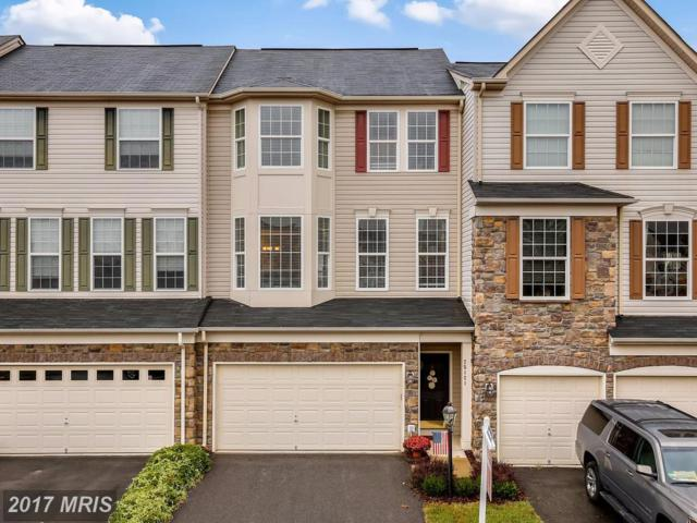 25121 Silurian Terrace, Aldie, VA 20105 (#LO10080896) :: Circadian Realty Group