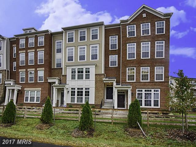 43481 Town Gate Square, Chantilly, VA 20152 (#LO10081704) :: Network Realty Group