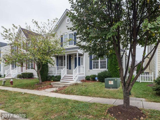 42484 Mandolin Street, Chantilly, VA 20152 (#LO10081892) :: Network Realty Group