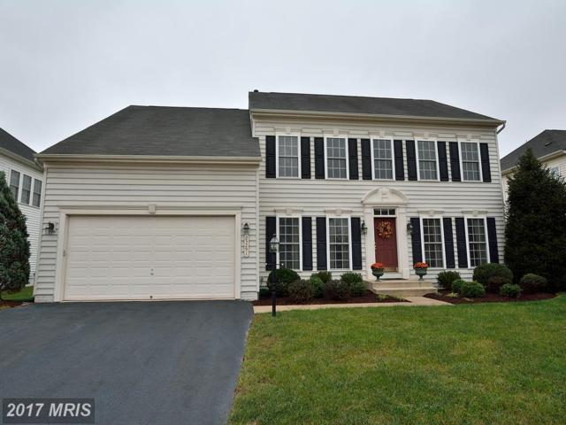 25291 Diligence Court, Aldie, VA 20105 (#LO10081893) :: The Cruz Group
