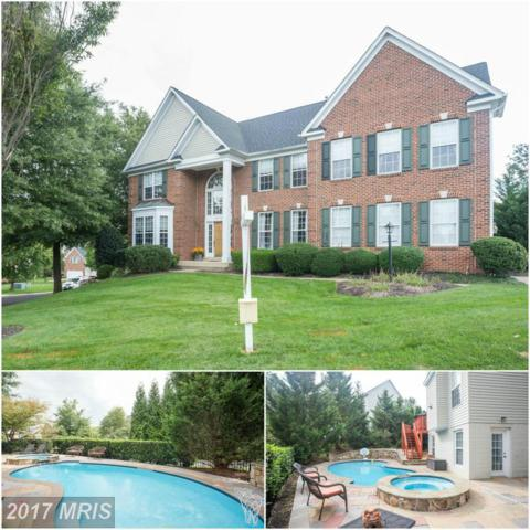 20382 Cliftons Point Street, Sterling, VA 20165 (#LO10083254) :: The Belt Team