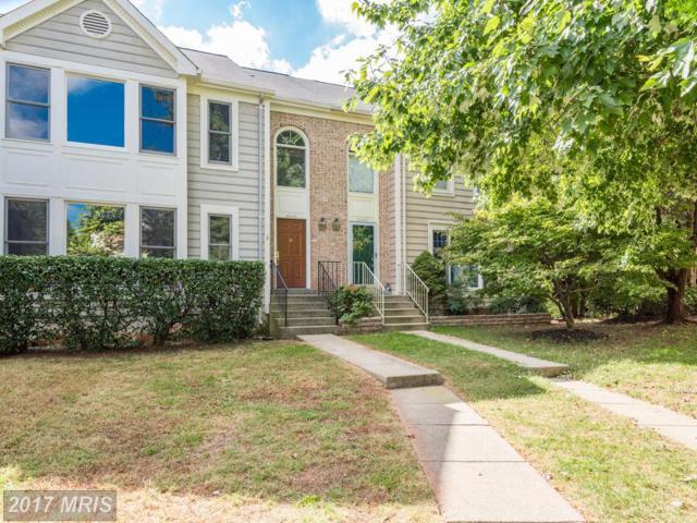 46835 Woodstone Terrace, Sterling, VA 20164 (#LO10083356) :: LoCoMusings