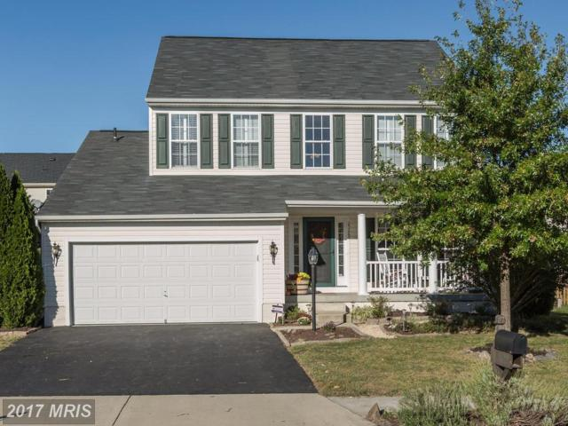 25268 Ultimate Drive, Aldie, VA 20105 (#LO10083921) :: The Gus Anthony Team