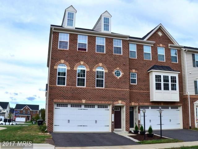 25801 Double Bridle Terrace, Aldie, VA 20105 (#LO10084170) :: The Cruz Group