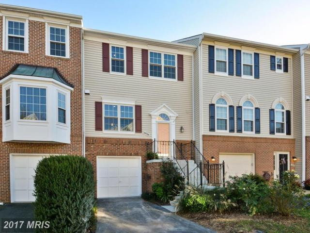 20178 Hardwood Terrace, Ashburn, VA 20147 (#LO10084831) :: Colgan Real Estate