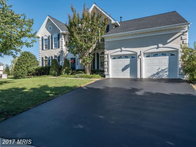 43648 Cather Court, Ashburn, VA 20147 (#LO10084871) :: Network Realty Group