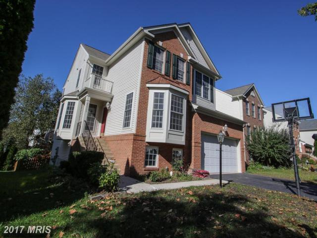 25933 Flintonbridge Drive, Chantilly, VA 20152 (#LO10085499) :: LoCoMusings