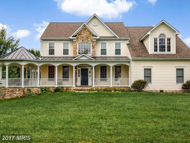 16777 Old Waterford Road, Paeonian Springs, VA 20129 (#LO10086165) :: Pearson Smith Realty