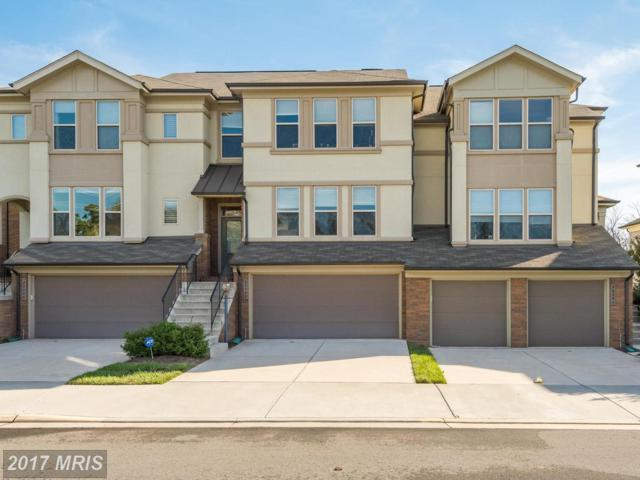 23392 Evening Primrose Square, Ashburn, VA 20148 (#LO10087034) :: Colgan Real Estate