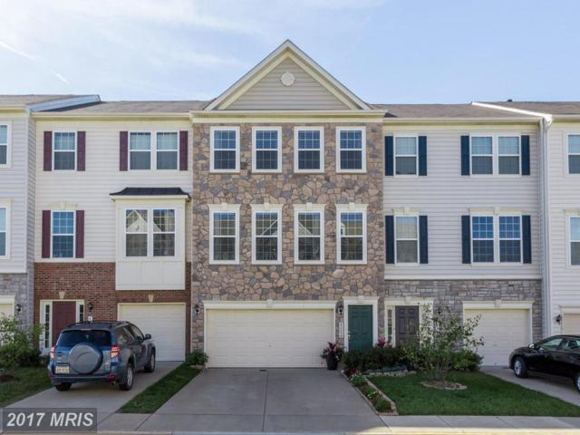 42254 Dean Chapel Square, Chantilly, VA 20152 (#LO10087080) :: The Tom Conner Team