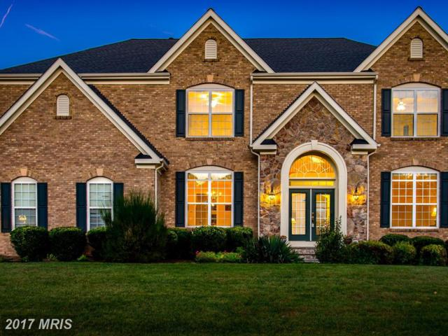 22406 Dolomite Hills Drive, Ashburn, VA 20148 (#LO10087089) :: The Tom Conner Team