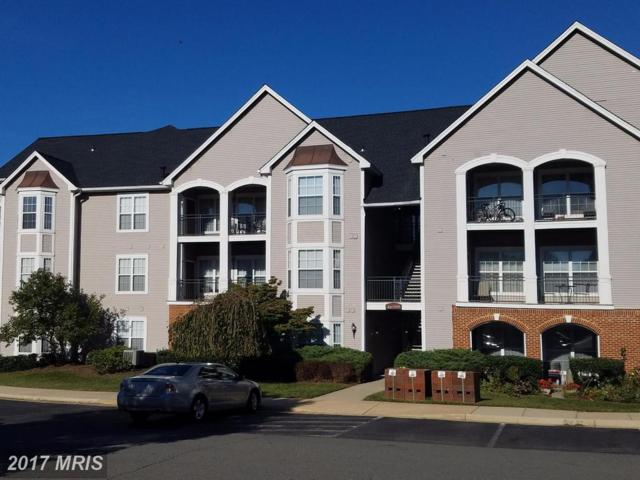 46620 Drysdale Terrace #200, Sterling, VA 20165 (#LO10087209) :: The Vashist Group
