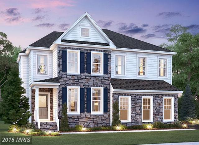 49032 Maplehurst Drive, Aldie, VA 20105 (#LO10091191) :: LoCoMusings