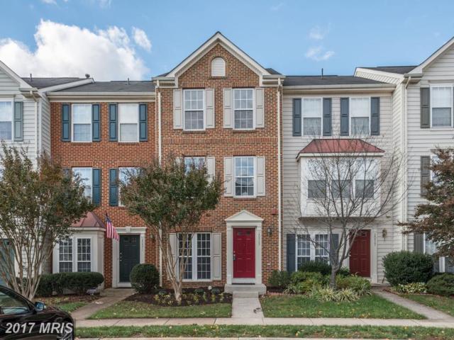 20969 Killawog Terrace, Ashburn, VA 20147 (#LO10093756) :: Wicker Homes Group