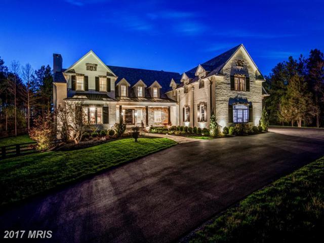 22553 Creighton Farms Drive, Leesburg, VA 20175 (#LO10093872) :: LoCoMusings