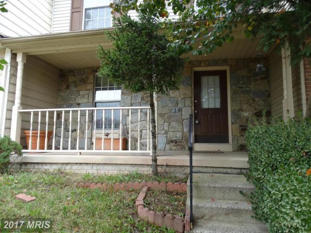43906 Chloe Terrace, Ashburn, VA 20147 (#LO10095943) :: Wicker Homes Group