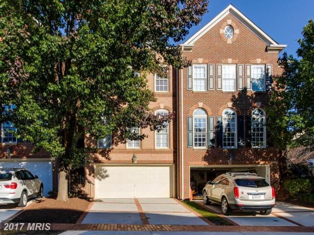 18530 Bear Creek Terrace, Leesburg, VA 20176 (#LO10096190) :: Labrador Real Estate Team